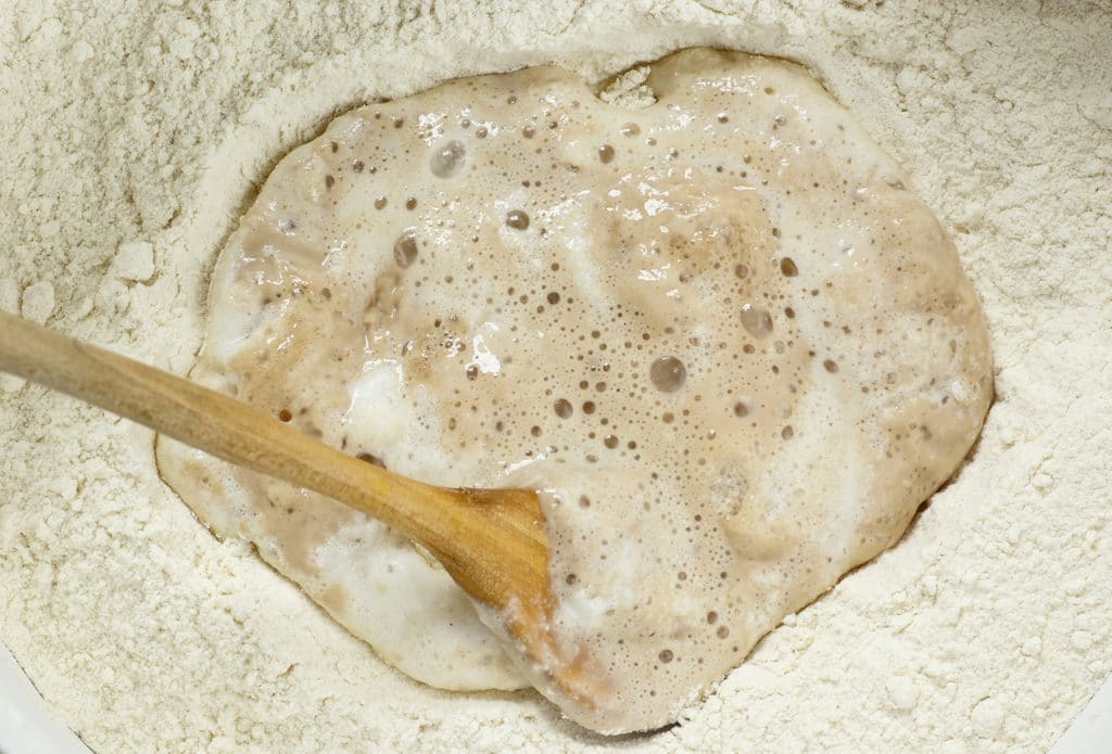 Sourdough Leaven Mixed with wooden spoon